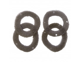 9812-espuma-tampa-carter-schulz-csv15